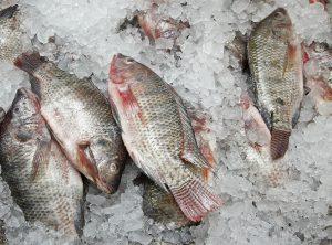Vào bếp làm món cá rán ướp tỏi cùng bếp điện từ